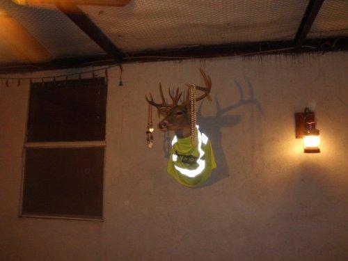 La Cantina deer head