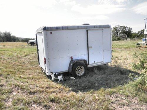 cargo trailer2