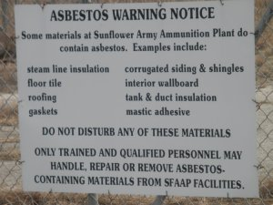 sunflower asbestos
